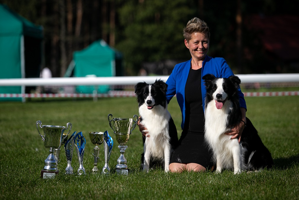 VIVA LA TIA kennel,breeding, sale, Border Collie puppies Forestry (Poland Pomorskie) Hodowla, s